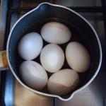 Eggs Your Local Color.Com
